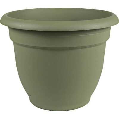 Bloem Ariana 8.8 In. H x 8 In. Dia. Plastic Self Watering Thyme Green Planter