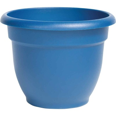Bloem Ariana 12 In. Plastic Self Watering Classic Blue Planter